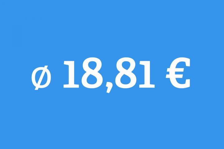 18,81 Euro bekommen Übersetzerinnen durchschnittlich je Seite