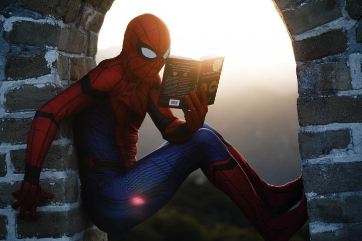 Lesender Spiderman als Motiv für den Artikel Franchise-Romane